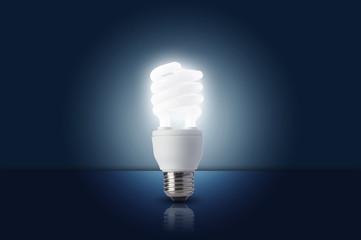 Florescent Light bulb turn on