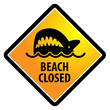 Shark sighting sign, Beach Closed, vector illustration