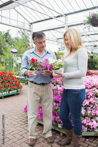 Couple choosing plants