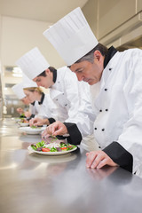 Concentrated Chef's preparing their salads