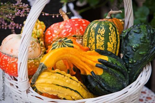 l pumpkins