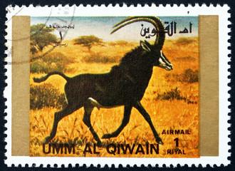 Postage stamp Umm al-Quwain 1972 Tiger, Animal