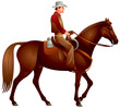 Cowboy on the horse