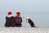 Young couple celebrating christmas with dog at the beach
