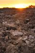 terre agricole au crépuscule