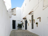 typical Andalusian street with whitewashed houses