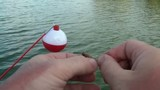Baiting Fishing Hook for Boy