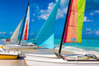 Catamarans with colorful sails landed on a cuban beach