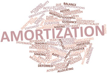 Word cloud for Amortization