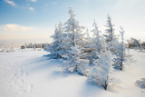Fototapety Beautiful winter mountain landscape