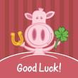 schwein good luck