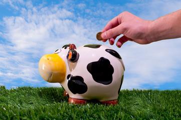 saving in piggy bank