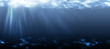 Leinwanddruck Bild - Unterwasser., lang