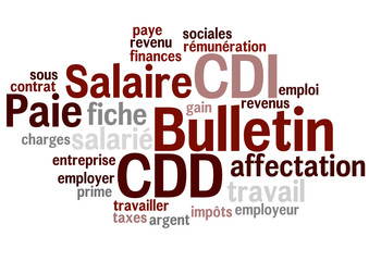 Nuage de Mot : Bulletin salaire paie