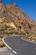 Road through volcanic land