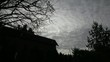 Timelapse on Dark Clouds with Trees on a Spooky Night