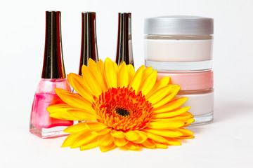 jar of cream, nail polish, gerbera