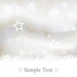 canvas print picture - Abstract Christmas background silver