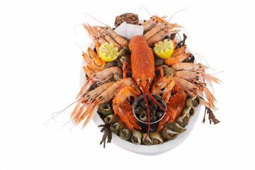 homard sur plateau de fruits de mer