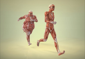 Cuerpo Humano Corriendo