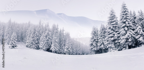 canvas print picture Panorama of the foggy winter landscape in the mountains