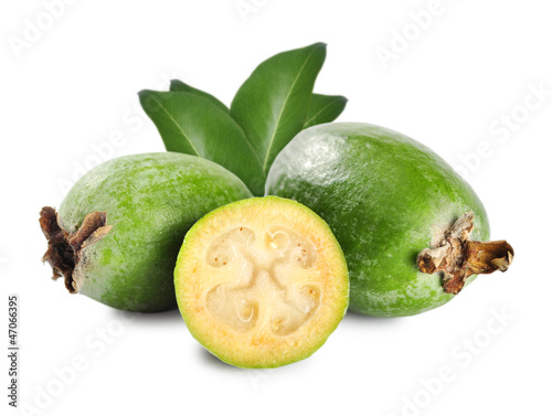 Tropical fruit feijoa