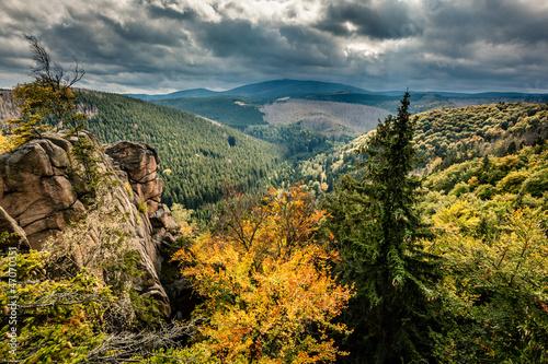 Leinwandbild Motiv wilder Harz, Herbst, Brocken