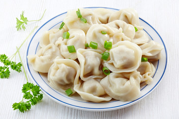 dumplings russian pelmeni