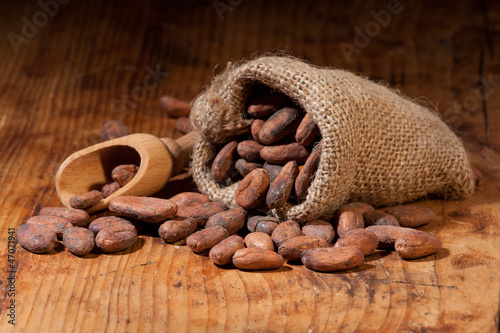 Cocoa_scoop_bag