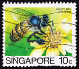 Postage stamp Singapore 1985 Honey Bee Collecting Nectar