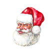 Illustration: Santa Claus Portrait