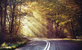 Fototapety Great shoot of sunbeams above the road