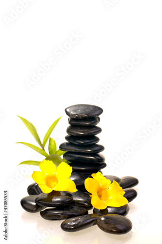 Stack of black zen stones with a bamboo plant and yellow flowers