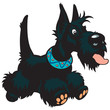 cartoon scottish terrier