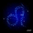 Sign of the zodiac - Leo