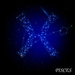 Sign of the Zodiac - Pisces. Composed of stars