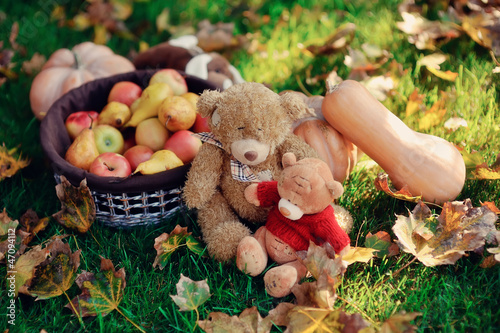 on the green grass is a fruit basket and a pumpkin sitting next