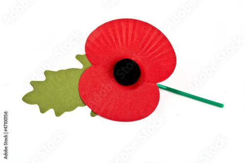 Poppy - 47100156