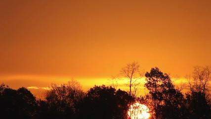 Sunrise over the forest timelapse