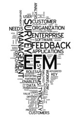 "Word Cloud ""Enterprise Feedback Management"""