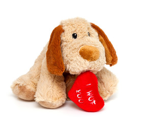 plush toy dog with red heart on white background