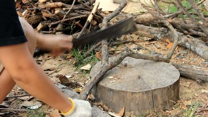 Cutting of firewood