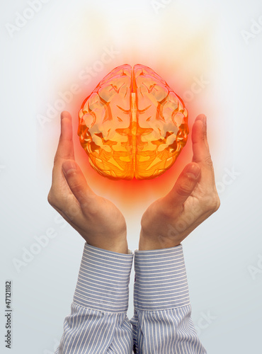 Taking the brain in the hand