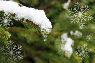 eistropfen und schneeflocken