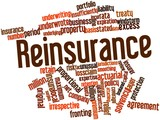 Word cloud for Reinsurance