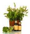 Essential oil and mint isolated on white