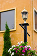 Flower pots hanging on the light pole