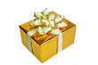 Golden gift box on white background.