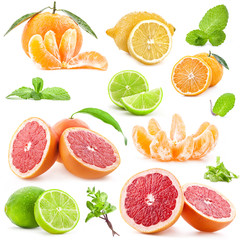 Collection of citrus with mint isolated on white background