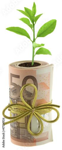 concept coût écologie, protection environnement
